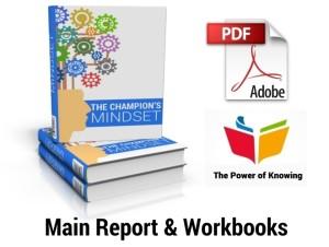Main Report plus Workbooks