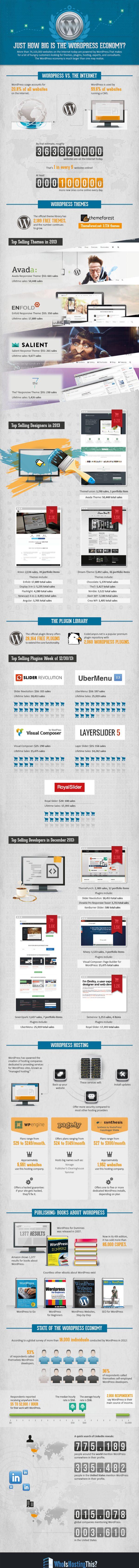 InfoGraphic_Wordpress